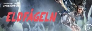 A4profilheader_Eldfageln_web