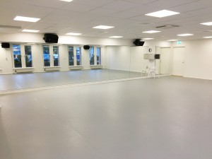 Danzlagret Studio